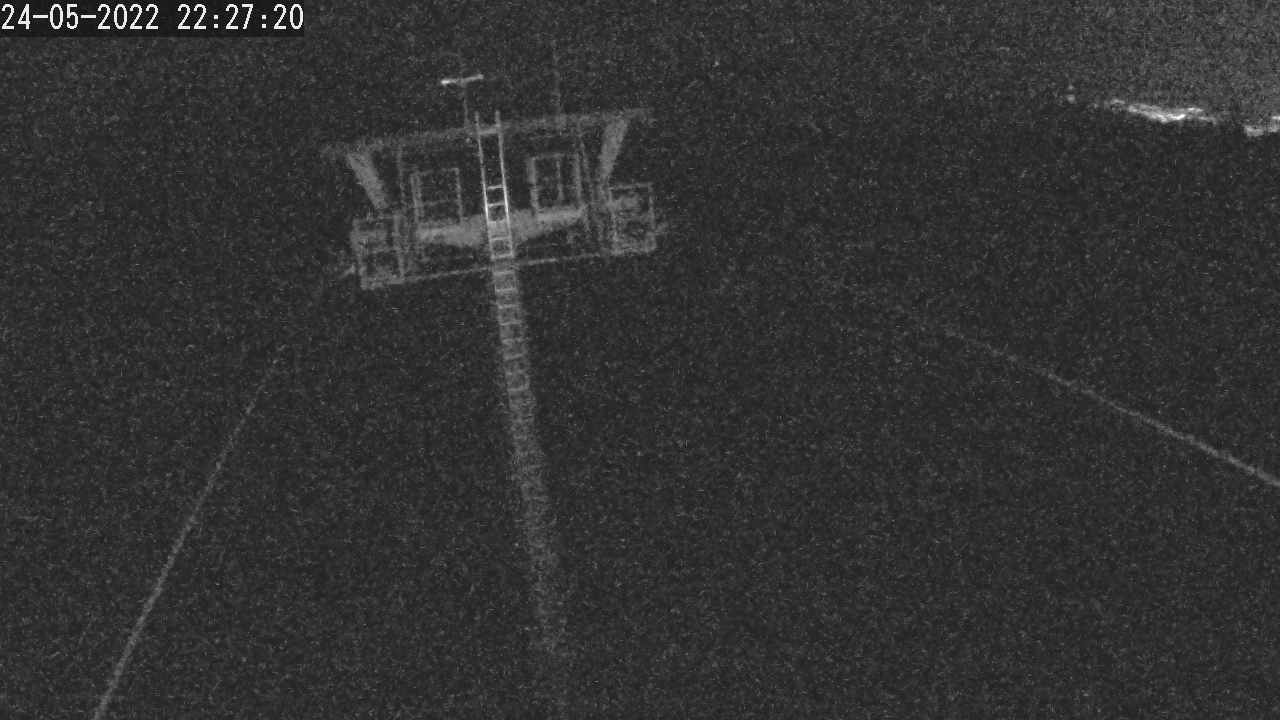 Králiky Live webcam